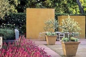 Kleine tuin met terras en vijver for Tuinontwerpen kleine tuin foto s